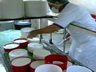 Queijo feito na Serra da Canastra é primeiro a conseguir Selo de Origem
