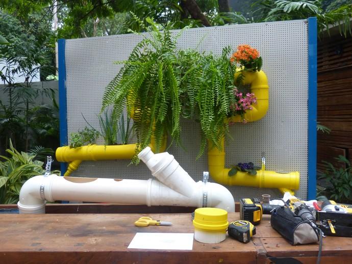 Jardim vertical é uma ótima opção para lugares pequenos (Foto: Anny Ribeiro/Gshow)