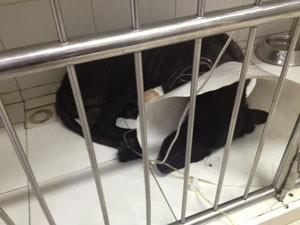 """Cachorro """"Furacão"""" morreu em clínica na noite de sábado  (Foto: Urânia Almeida/Arquivo Pessoal )"""