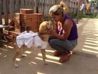 Cão esfaqueado 7 vezes no Amapá mobiliza internautas no Facebook
