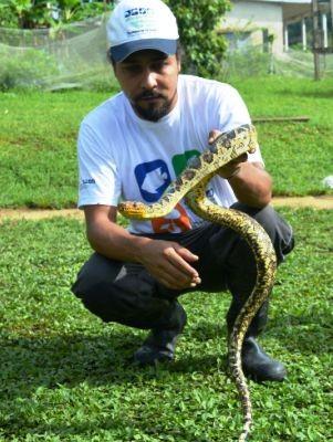 Biólogo Bruno Rocha segura animal encontrado no Vale  (Foto: Lívia Corrêa/Arquivo Pessoal)