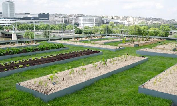 Na cobertura do prédio da Cordon Bleu, horta orgânica e apiário (Foto: Emilie Burgat  /  Divulgação)