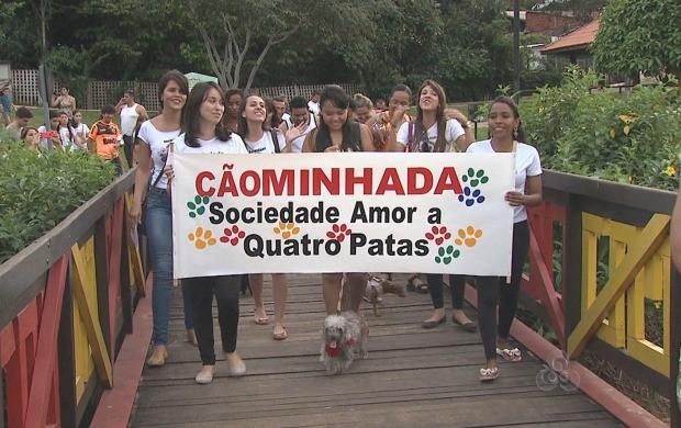 Os cães e seus donos caminharam em Rio Branco neste domingo (8) (Foto: Reprodução TV Acre)