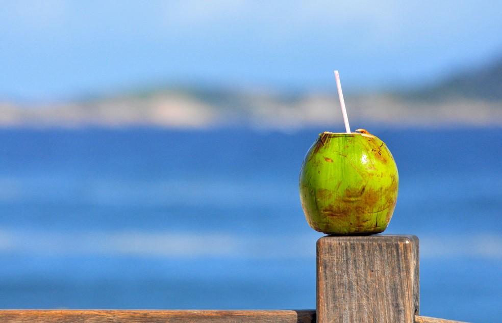 Casca do coco tem potencial energético, aponta pesquisa da Unicamp (Foto: Alexandre Macieira/Riotur)