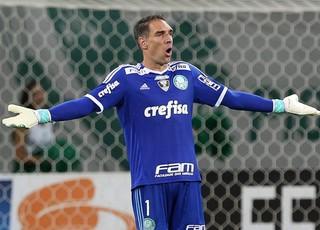 Palmeiras Fernando Prass (Foto: Cesar Greco/Ag Palmeiras/Divulgação)