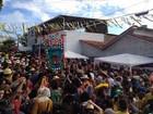Ao som de forró, Boi da Macuca arrasta multidão em Olinda