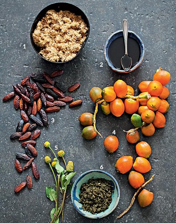 Floresta de sabores (Foto: Elisa Correa/Editora Globo)