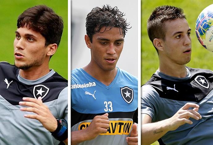 Jogadores Botafogo (Foto: GloboEsporte.com)