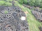 Cerca de 30 mil pneus são localizados (Divulgação/Batalhão Ambiental de Passo Fundo)