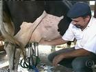 Projeto no PR ajuda produtores de leite a aumentar os lucros