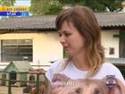 Cães e gatos abandonados esperam por adoção em abrigo de Viamão, RS