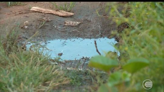 Chikungunya castiga moradores da Zona Sul de Teresina