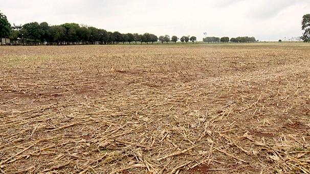 Solo degradado preocupa produtores da região (Foto: Reprodução/TV Fronteira)