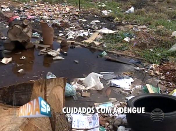 Água parada é o principal causador de focos da dengue (Foto: Reprodução/TV Fronteira)