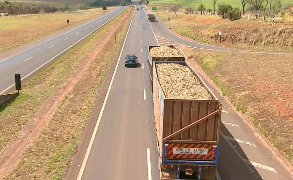 Caminhão carrega cana-de-açúcar sem cobertura de lona ou telas em rodovia (Foto: Reginaldo dos Santos/EPTV)