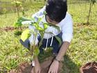 Universidades recebem calouros com trote ecológico em Campinas