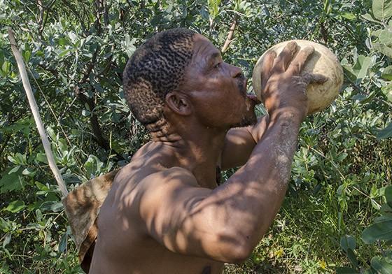 Depois de desenterrar um ovo de avestruz, Qhaikhgao bebe um gole de água do pequeno reservatório  (Foto: © Haroldo Castro/ÉPOCA)