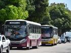Transporte para distritos de Belém começa a ser reforçado