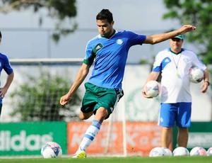Alan Kardec Palmeiras (Foto: Marcos Ribolli / Globoesporte.com)