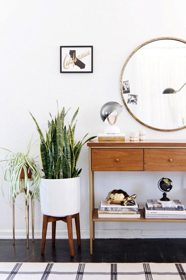 Planta ao lado da penteadeira (Foto: Pinterest/Reprodução)