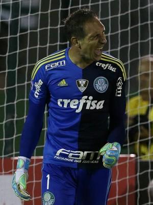 Fernando Prass (Foto: César Greco / Ag. Palmeiras / Divulgação)