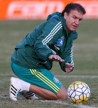 Cuca Palmeiras treino (Foto: Cesar Greco/Ag Palmeiras/Divulgação)