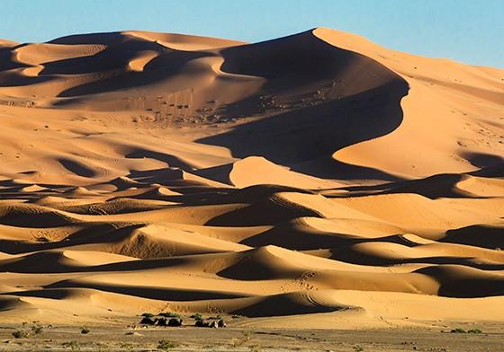 Um grupo de camelos aos pés de dunas ao leste do Marrocos (Foto: © Haroldo Castro/Época)