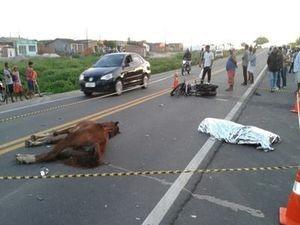 Motociclista morre ao colidir veículo com animal na BR 235 em Sergipe (Foto: Divulgação/Wendell Silva/FM Itabaiana)