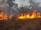 Calendário itinerante de queimadas de 2016 é divulgado em Roraima