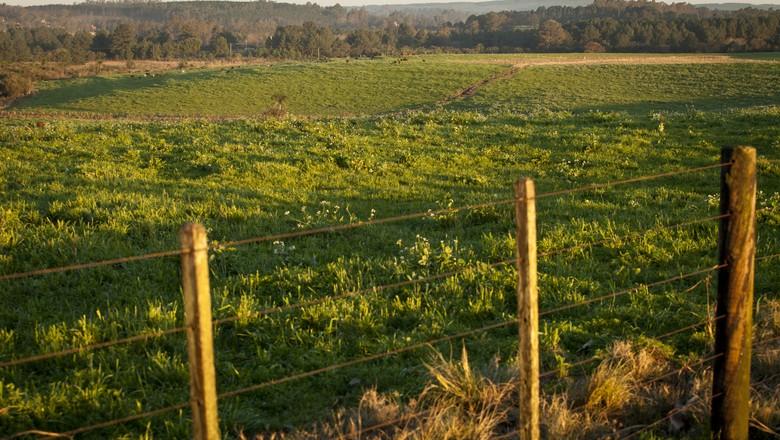 agricultura_terra (Foto: Marcelo Curia / Ed. Globo)