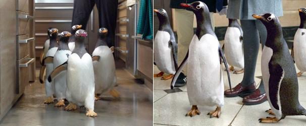 Pinguins do filme são da espécie gentoo (Foto: Divulgação/Reprodução)