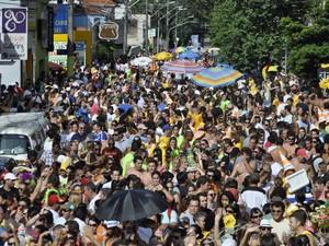 Desfile 2012 do cordão carnavalesco City Banda, em Campinas (Foto: Tiago Gonçalves/ G1)