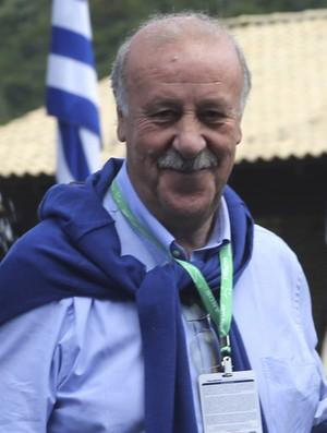 Vicente del Bosque coletiva Copa do Mundo (Foto: EFE)