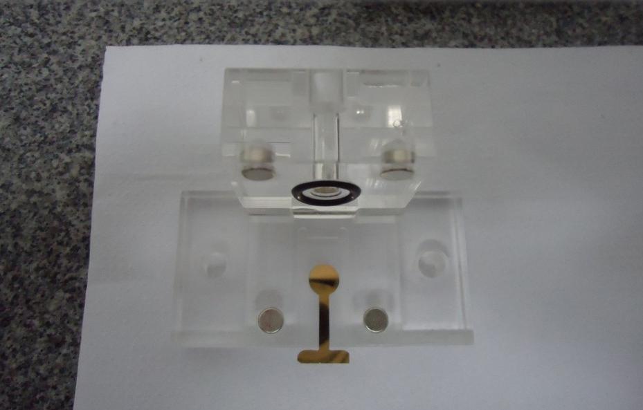 Amostra de anticorpo é colocada em um eletrodo de ouro em escala nanométrica (Foto: Divulgação)
