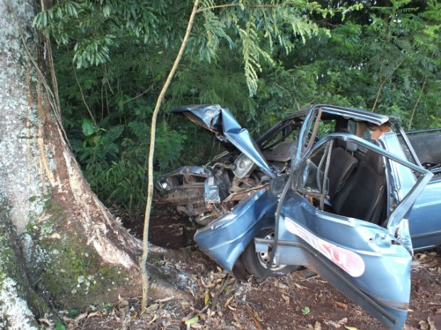 Motorista perdeu o controle e bate em árvore na BR-277 (Foto: Paulo Romeu Domingues Junior)