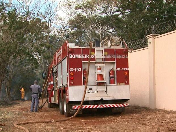 Fogo em mata chega a se aproximar de condomínio fechado em Ribeirão Preto, SP. (Foto: Ronaldo Gomes/EPTV)