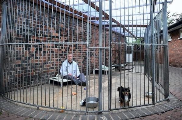 Dog Kennels Cheshire