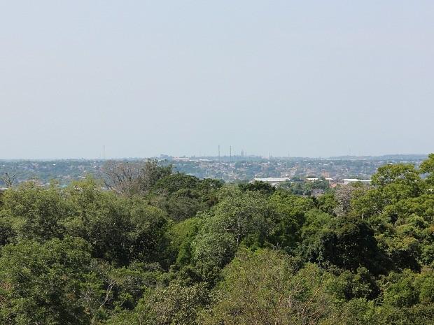 Alto da torre tem vista de copa das árvores e cidade, ao fundo (Foto: Camila Henriques/G1 AM)