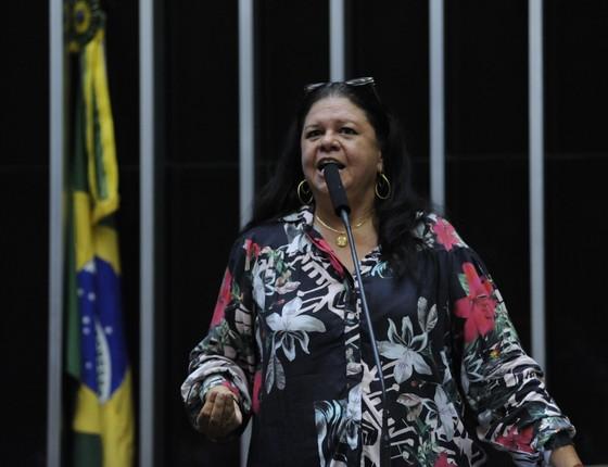 A deputada Laura Carneiro (PMDB-RJ) (Foto: Luís Macedo / Câmara dos Deputados)