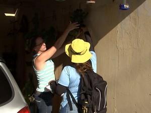 Agentes vão passar em todos os bairros de Bauru (Foto: Reprodução / TV TEM)
