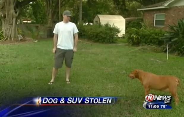 Rich McGannon está oferecendo US$ 5 mil de recompensa na tentativa de recuperar sua cadela de estimação. (Foto: Reprodução)