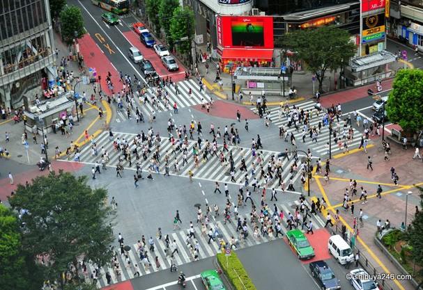 Japão por Lelê: 14 maravilhas em Tóquio que você tem-que-ver