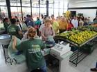 Vendas nos sacolões de Curitiba crescem até 30%; veja onde comprar