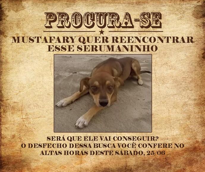 Marco Luque está procurando cachorro que bombou na web (Foto: Gshow)