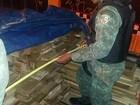 Polícia apreende madeira ilegal (Divulgação/PM)