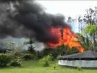 No Havaí, lava do vulcão Kilauea engole floresta, estradas e carros