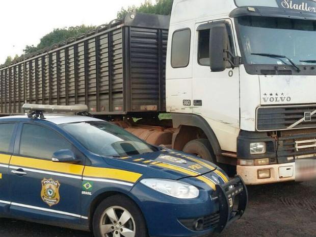 caminhão apreendido BR-365 Uberlândia (Foto: PRF/Divulgação)
