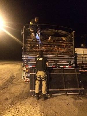 PRF apreende 19 m³ de madeira ilegal na BR-010. (Foto: Divulgação/ PRF)