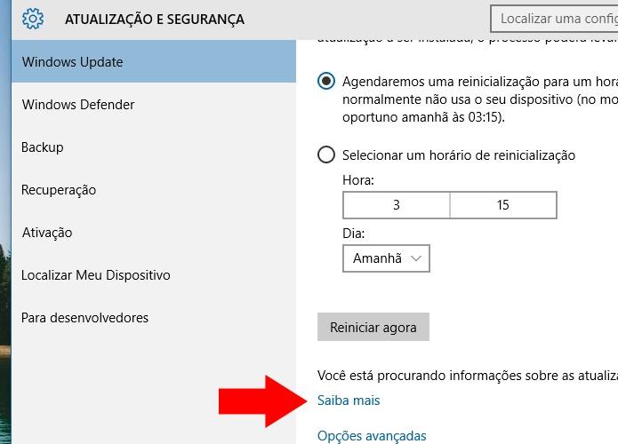 Acesse o link oficial de atualização da Microsoft (Foto: Reprodução/Paulo Alves)