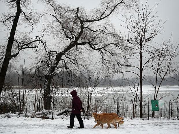 Mulher passeia com cachorro em Nova York neste sábado (24) (Foto: Spencer Platt/Getty Images/AFP)